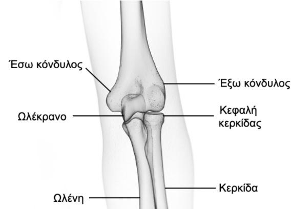 κακώσεις αγκώνα 1